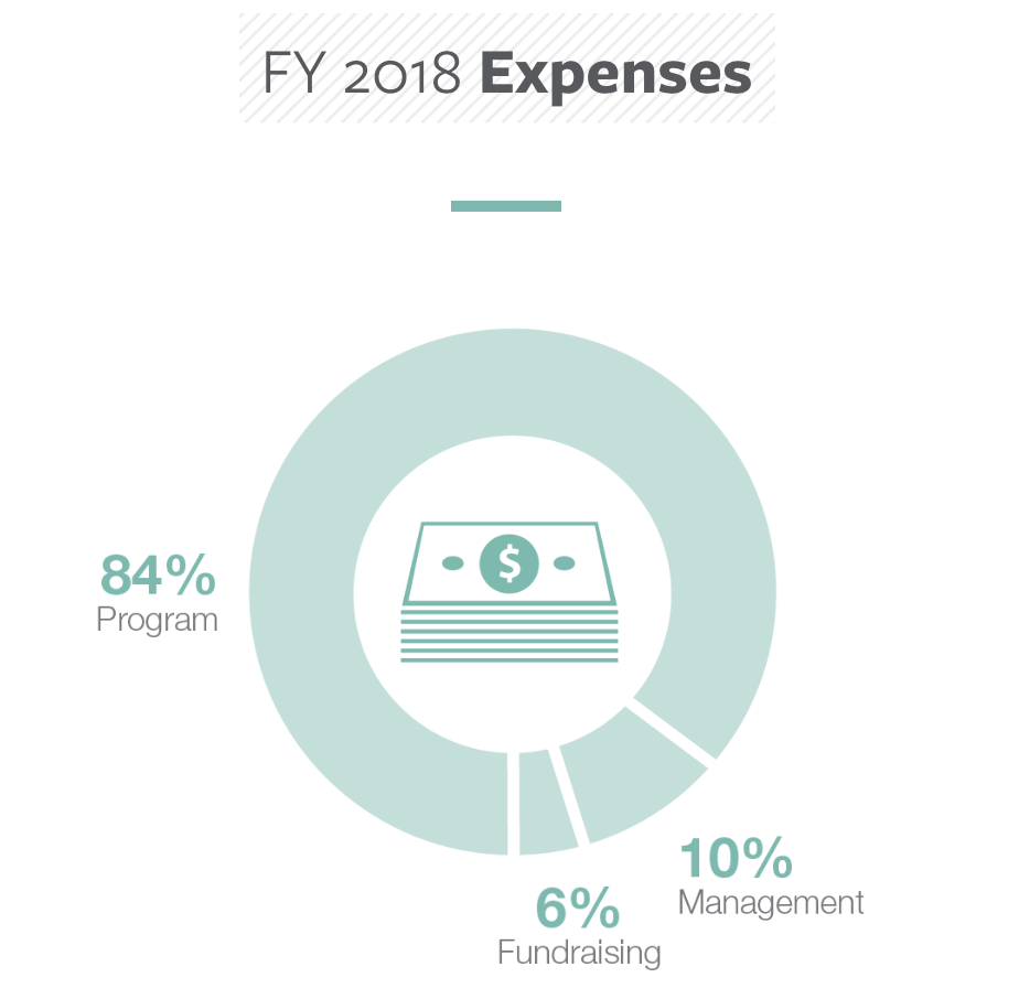 FY2018-financials-expenses.png