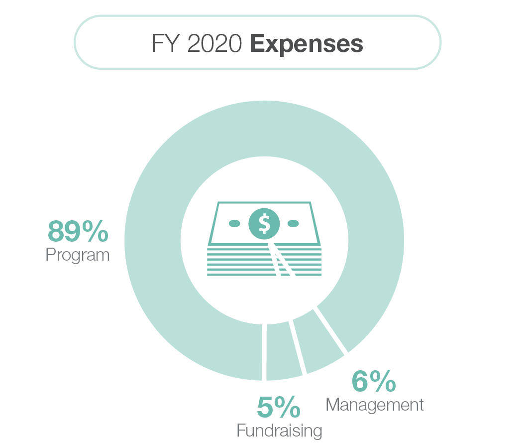 fy2020-expenses-graph