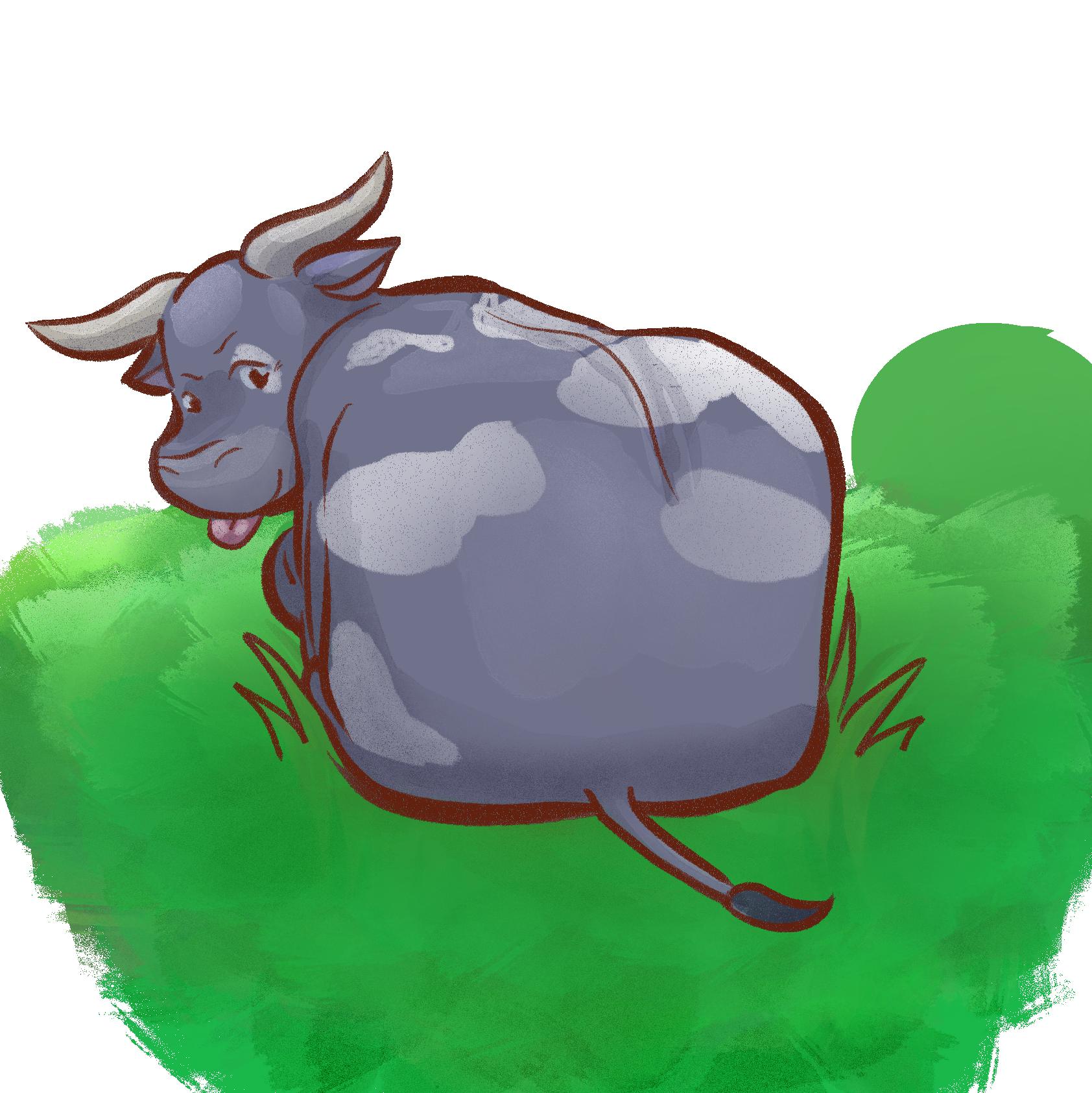kraal cows1